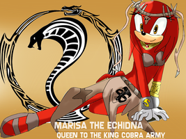 Marisa The Echidna- Slave Ritual Outfit- Wallpaper by Absolhunter251