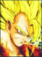 DBZ: The Ultimate Warrior Cover Art by The-Potara-Fusion