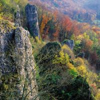 autumn in franconia 6x6 by mescamesh