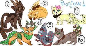 Point Adopts -SALE- by Nyyra