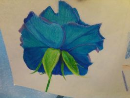 Colored Pencil Flower by Miss-May21