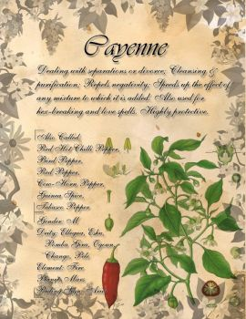 Book of Shadows: Herb Grimoire - Cayenne by CoNiGMa