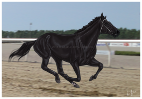 Galloping Down the Track by Jullelin