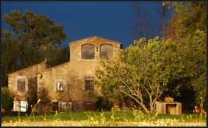 masia 2 by groomit41