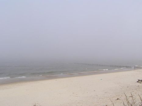 One Foggy Day by njibhu
