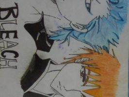 Grimmjow and Ichigo by seraiahdavinci