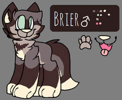 Brier Ref by imakocoa