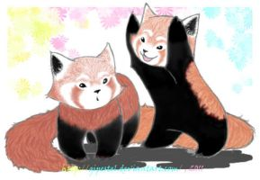 red panda's love by GIPeStEl