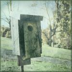 vintage birdhouse by Moon-Willow