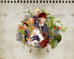 [20130927] KaiSoo Wallpaper by LonaSNSD