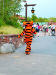 Tigger Tale View by scriptedcolour