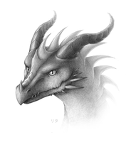 Dragon's head by RitaRaven