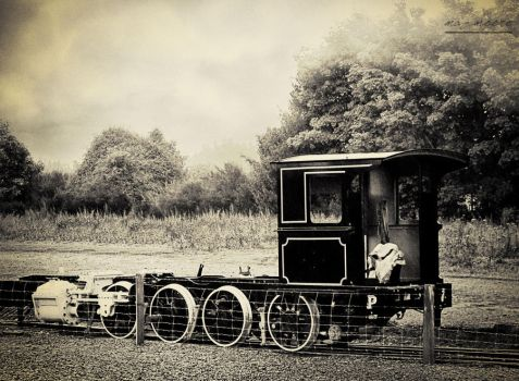 364 - Solitary Carriage by mazmoore