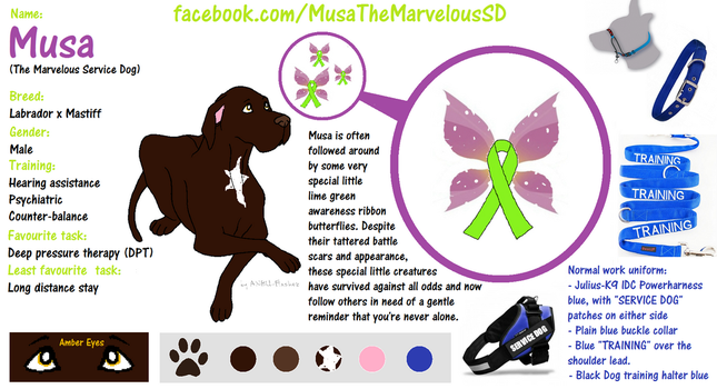 Musa The Marvelous SD ref sheet by bunnybasement