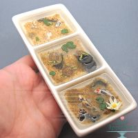 Split Dish Miniature Pond by Bon-AppetEats