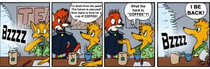 What is coffee? by rodrev