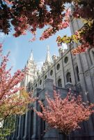 Salt Lake City Temple -1- by zulugrid