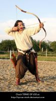 Hungarian Archer 16 by syccas-stock