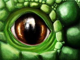 dragon eye by AnimositysDiviner