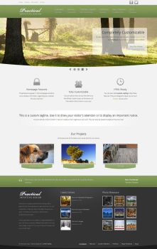 Practical - Business Theme for WordPress by cpothemes