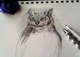 Horned Owl Sketch by kagedking