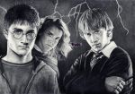 Harry Potter commission by xHideFromTheSunx