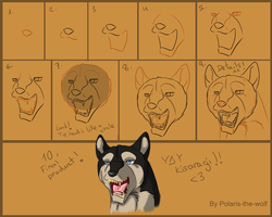 Ginga Tutorial - HEAD by RakPolaris