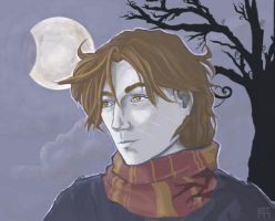 HP - Remus Lupin by chocolatejunkie