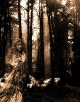 Forest Ghost by Forestina-Fotos