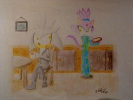 Contest Entry- Silvaze - Married Life by Nado13579