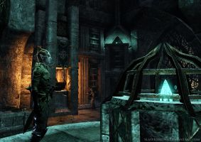 Cyndril in the Mage's Guild by SlayerSyrena