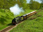 The Bluebell Railway by ancoben