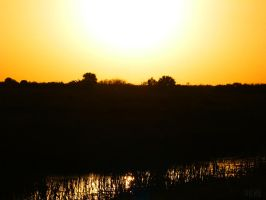Sunset Over Loxahatchee by UniversalKinase