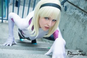F15 - Spider-Gwen by BlizzardTerrak