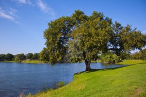 Lake Cliff Park by GaelStorm