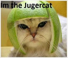 Im The jugercat! by The--Mad--Russian