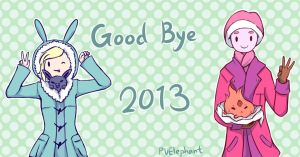 Goodbye 2013 by PvElephant