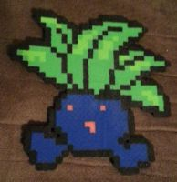 Oddish perler by DuctileCreations