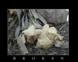 Broken by Findae