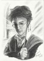 Harry Potter by Destincor