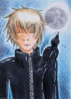 Raven (ACEO 70) by Naousuke