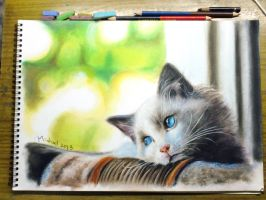 Cat-pastel by Michael-Chiu-2013