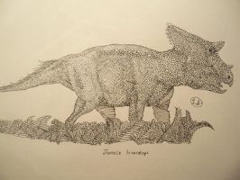 Juvenile Triceratops by cryptidsaurian