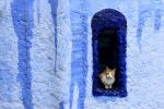 Postcard from Chefchaouen 05 by JACAC