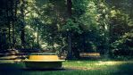 GIF - Empty carousel in the forest by turst67