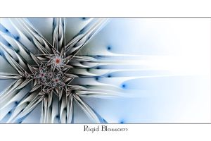 Rigid Blossom by MichaelFaber
