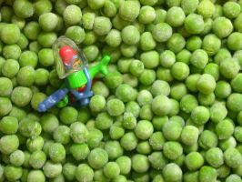 pea macro 01 by tiffgraphic