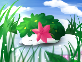 sleeping shaymin by Effier-sxy