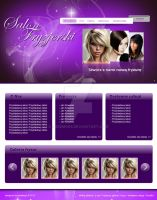 Project of hairdresser site by Przemo85