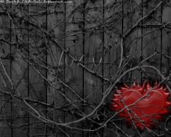 Wall Vines Heart by Dan4ArChAnGeL